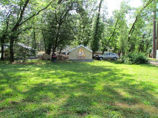 Lakehead Campground and RV Park: The whole camp site, all yours