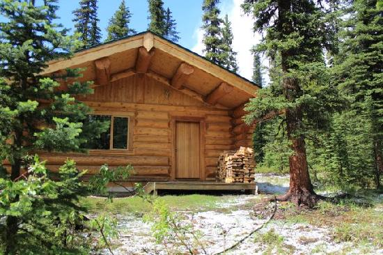 Rocky Mountain Escape Cabins: after the hailstorm