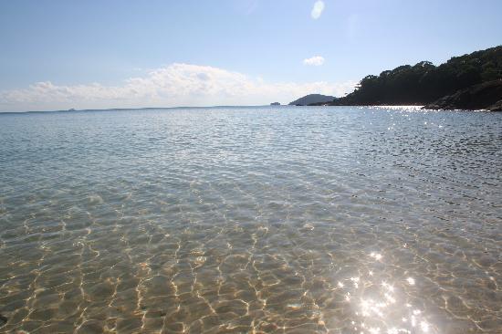 Whitehaven Beach : Whitehaven Water