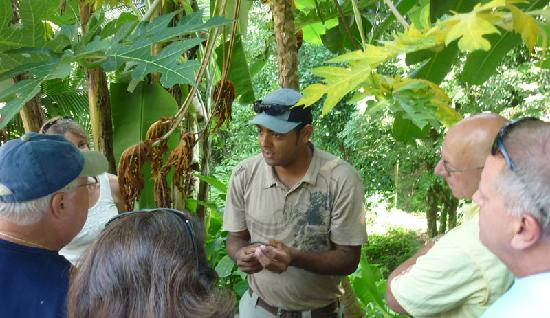 Playa Manuel Antonio: Our Naturalist Guides will show you every detail of our journey