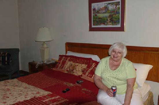 Original Springs Mineral Spa Hotel Okawville Il Reviews