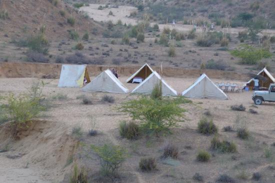 Ram Kuti Pushkar : camel safari