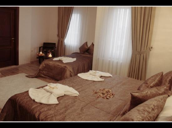 Sultanahmet Cesme Hotel: Std Rooms