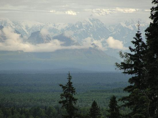 Talkeetna Treetop Chalet: Beautiful View