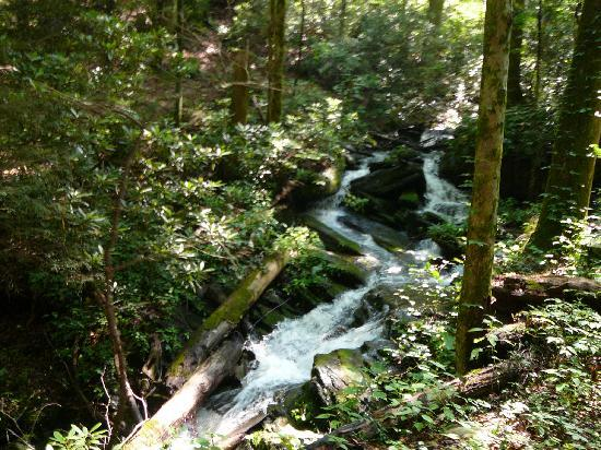 Sugarland Riding Stables: Small waterfall on Sugarlands trail