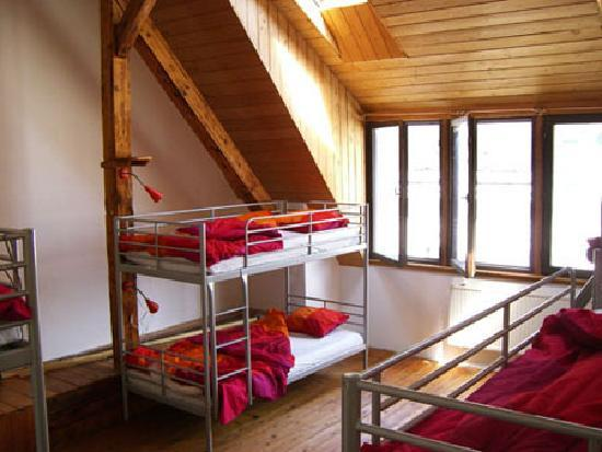 The Loft Hostel Budapest: dorm room
