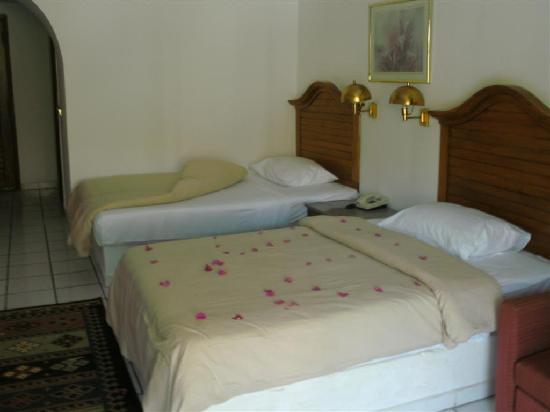 Aladdin Beach Resort: Zimmer am Tag der Ankunft