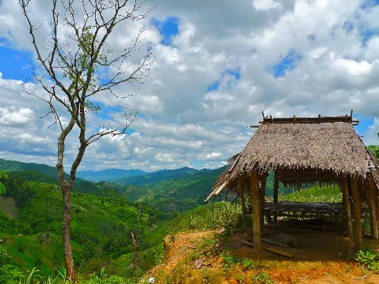 Doi Mae Salong : A hut atop a hill near Mae Salong