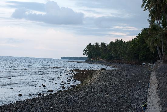 Agung Bali Nirwana Private Luxury Villas: The beach