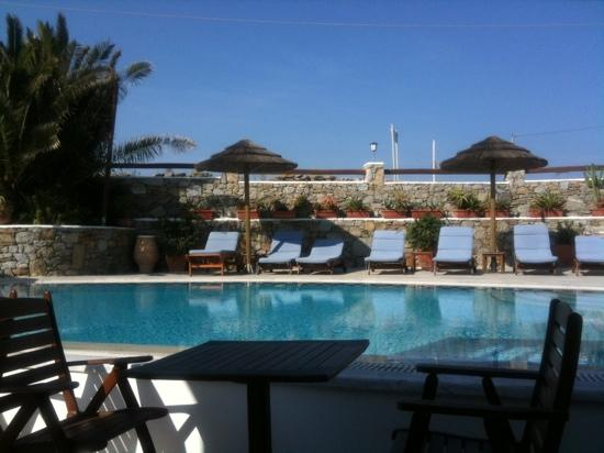 Domna Petinaros Apts Hotel Mykonos: The pool
