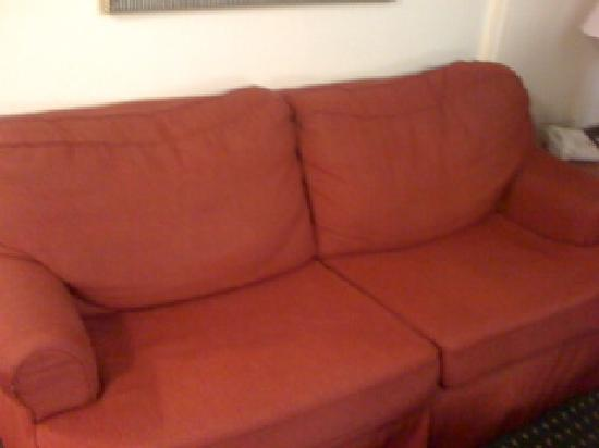 TownePlace Suites by Marriott Atlanta Kennesaw: saggy sofa
