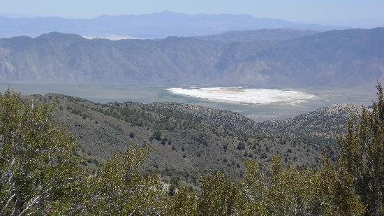Bishop, CA: View from the Methusaleh trail.