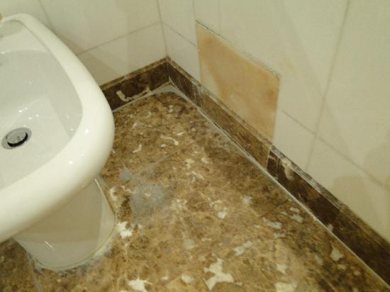 Cham Palace Damascus : limpieza