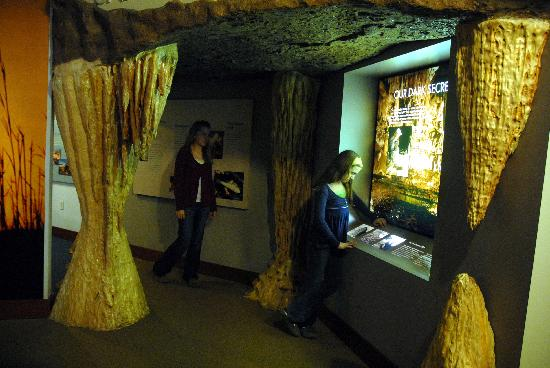 Jefferson City, MO: Check out the caves, fish tanks, grasslands and more at Runge Nature Center.
