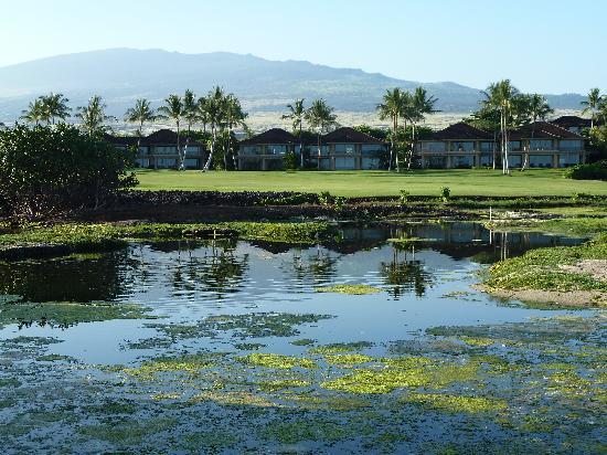 Four Seasons Resort Hualalai: Looking towards the golf course