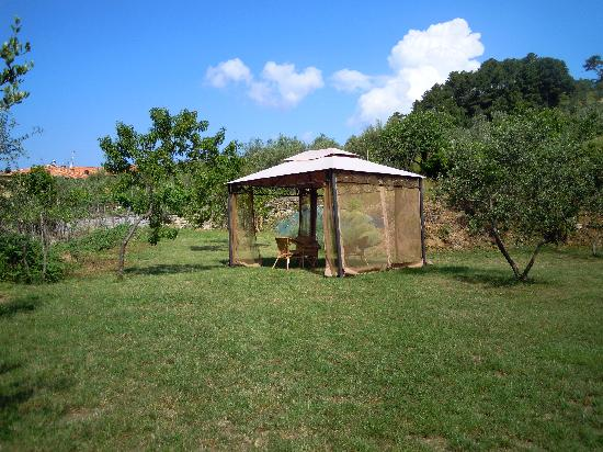 Parte del giardino bild von il giardino degli angeli framura tripadvisor - Il giardino degli angeli ...