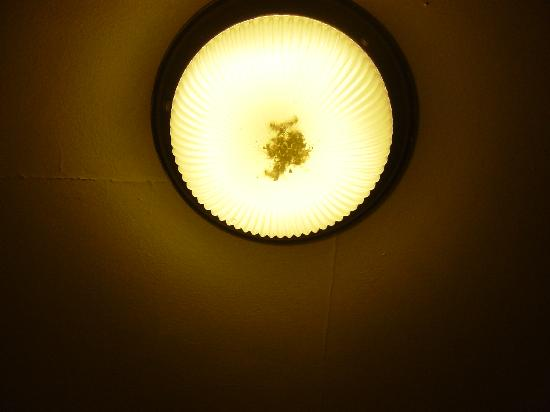 Pearson Park Hotel: Light in bathroom