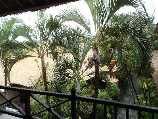 Bali Agung Village: Vue de notre chambre