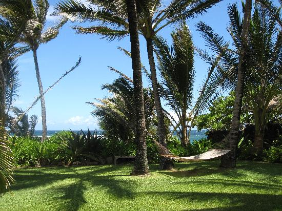 Hale Makai Cottages: step outside the cottage to the hammock and beach!