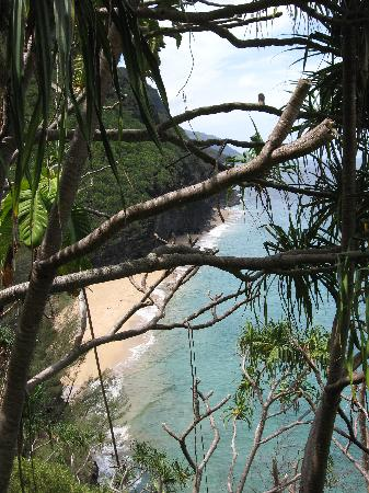 Hale Makai Cottages: nearby Kalalau trail hike, lined with pineapple trees and exotic flowers