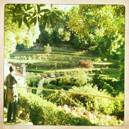 Monte Da Lua : Nearby garden