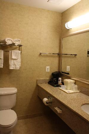 Comfort Inn Toms River: Bathroom view