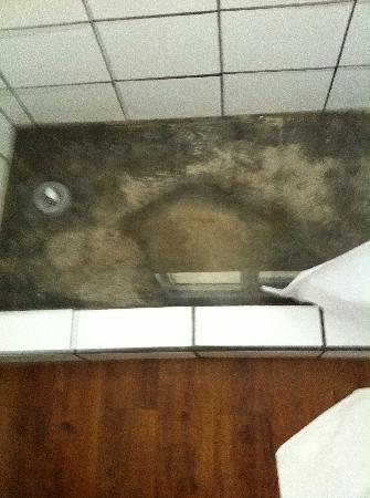 """Casa Condado Hotel: standing """"dirty"""" water"""