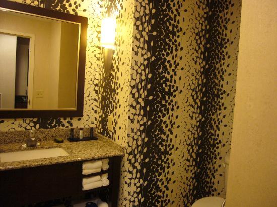 Embassy Suites by Hilton Buffalo: Bathroom
