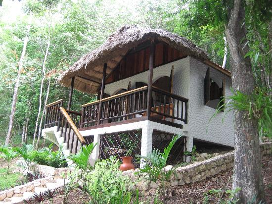 Table Rock Jungle Lodge: The office