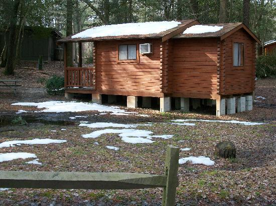 Holly Lake Camp Sites: Rental Cabins