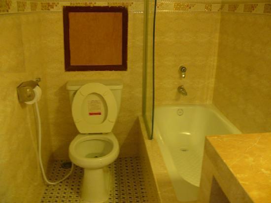 Paris Angkor Boutique Hotel: Bathroom