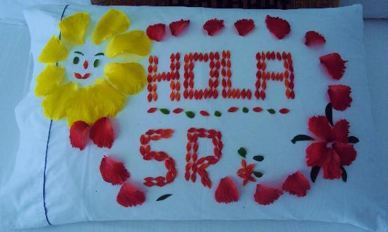 Holiday Inn Resort Ixtapa : Detalles todos los días