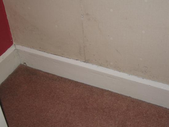 The Garrack Hotel: Room 16 - Mouldy walls