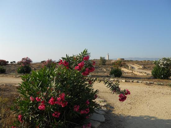 Kato Paphos Archaeological Park: The lighthouse adds to the overal ambience!