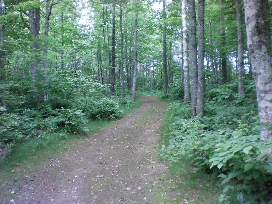 New Glasgow Highlands Campgrounds: walking trails