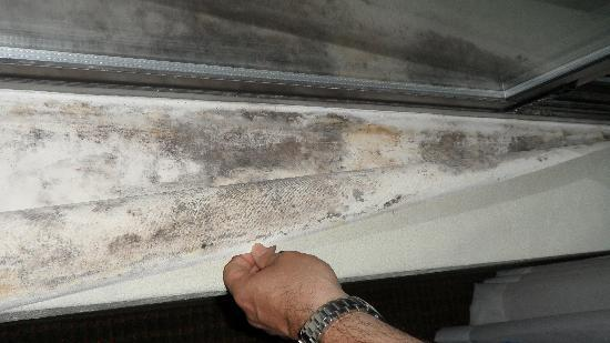 Comfort Suites South Burlington: Even more mold