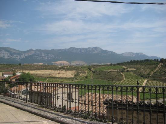 Carpe Diem : uitzicht op wijngaarden