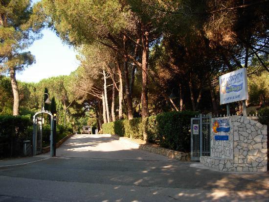 Marina di Bibbona, Italia: ingresso