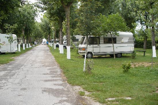 Alba D'Oro Camping : Venice campsite