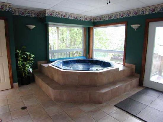Pine vista resort updated prices reviews photos for Indoor bathroom hot tubs