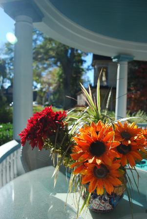 The Peach House: porch flowers in the morning sun