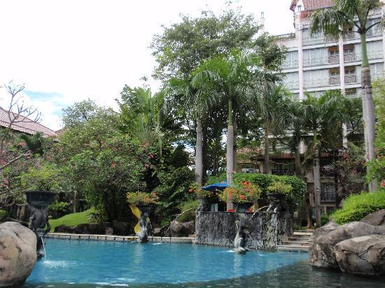 Novotel Surabaya Hotel and Suites : garden and swimmingpool