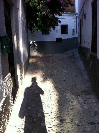 El Numero 8: labyrinth alley
