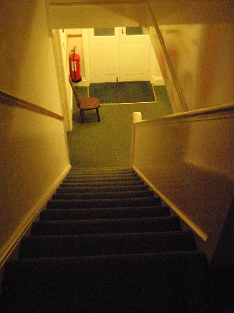 Stockwell Lodge Guest House: Stairway (plenty of room)