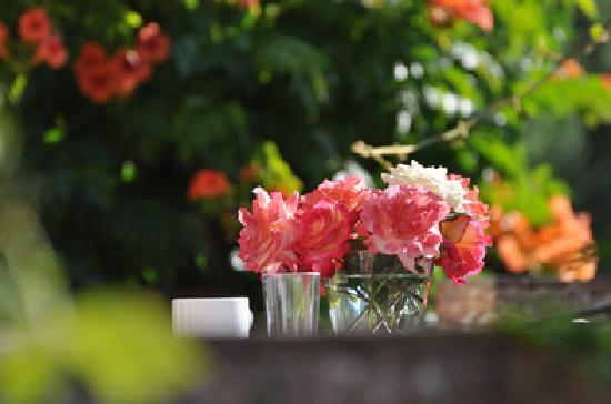 Palmento la Rosa: Beautiful Garden