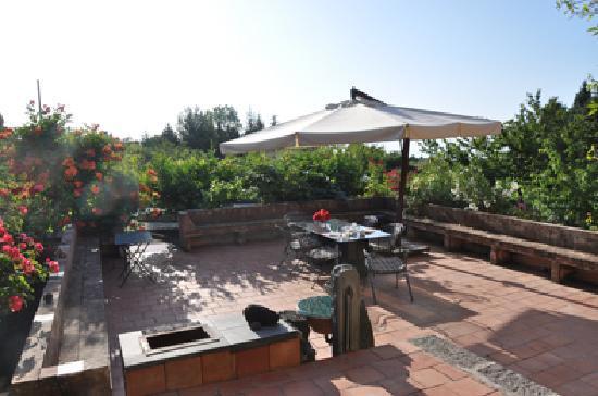 Palmento la Rosa: Garden place