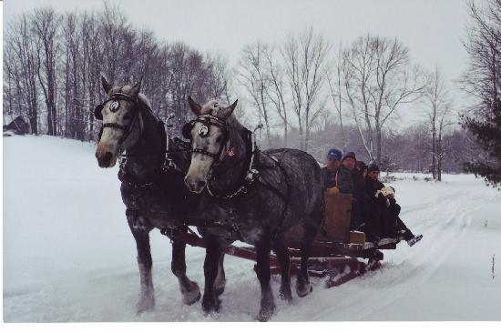 ‪‪Pine Vista Resort‬: Horse Drawn Sleigh Ride‬