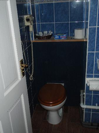 Penygawse Guest House & Tea Rooms : Bathroom - Toilet