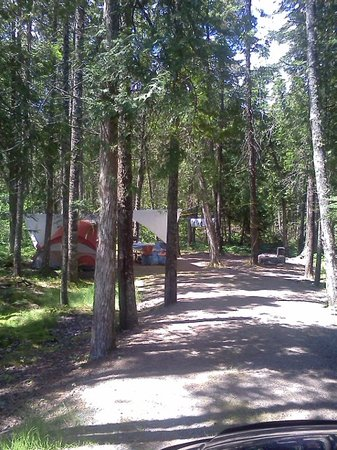 Seawall Campground: My site