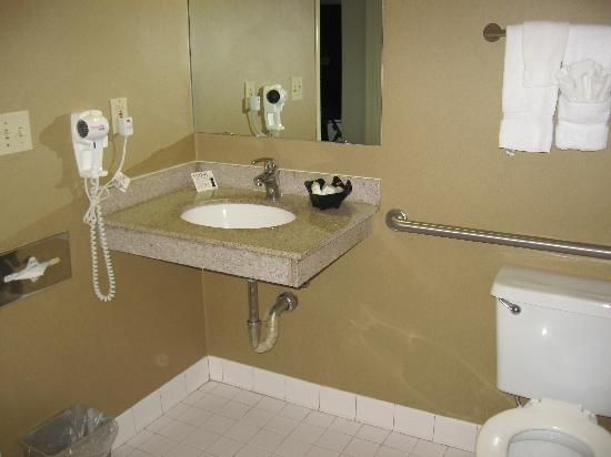 Clarion Hotel : Sink Area